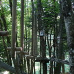 Lac'Cro Parc Aventure Accrobranche Fun Famille Sortie Amis Top Tarn 81 Midi Pyrennées Mazamet
